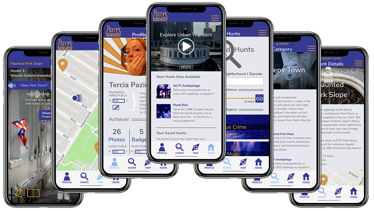 City Sleuth User Interface